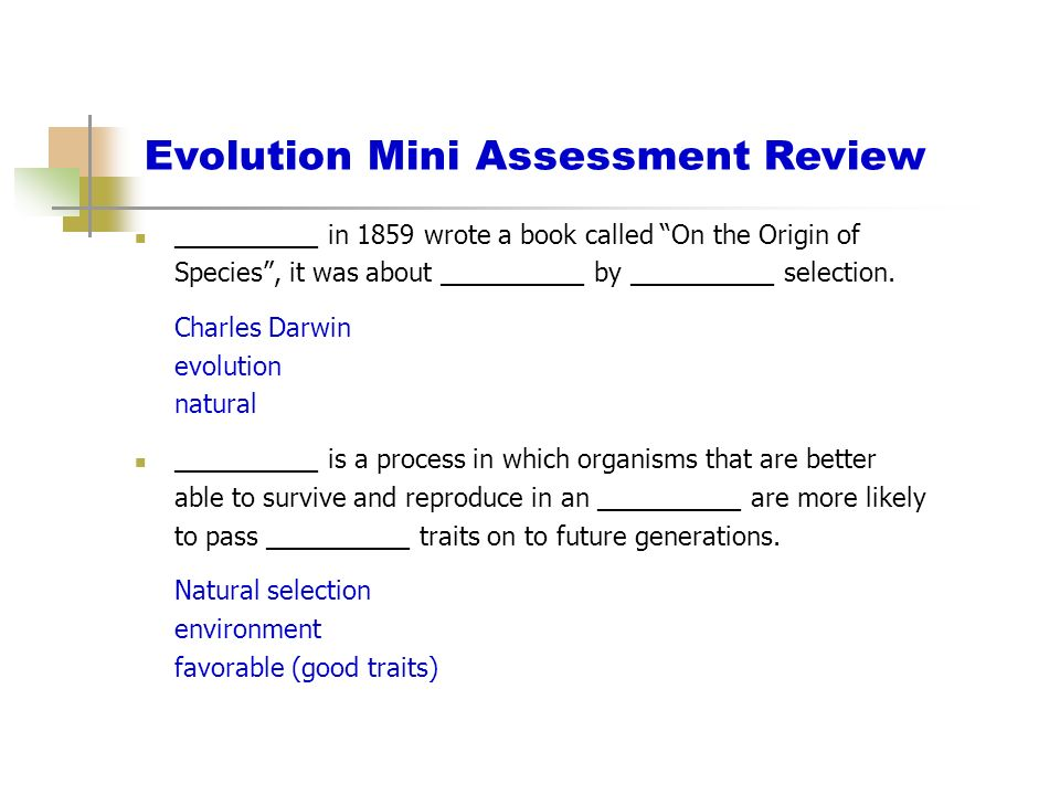 Evolution Mini Assessment Review