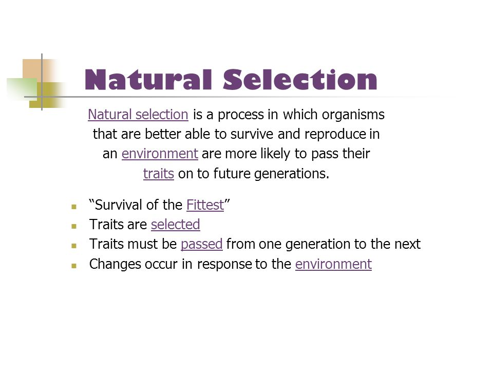 Natural Selection Natural selection is a process in which organisms
