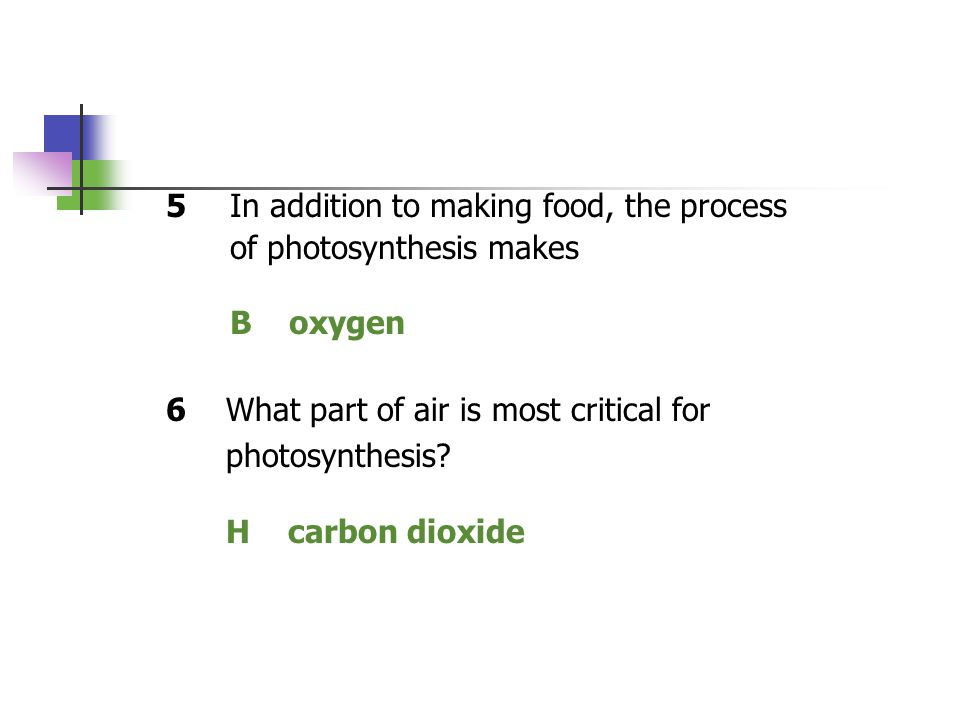 B oxygen H carbon dioxide 5 In addition to making food, the process