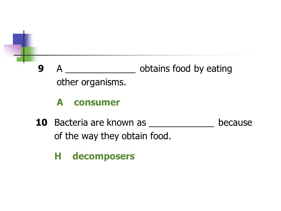 9 A ______________ obtains food by eating