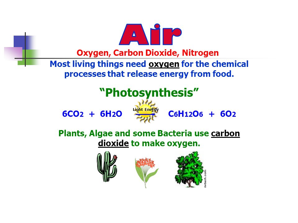 Air Photosynthesis Oxygen, Carbon Dioxide, Nitrogen