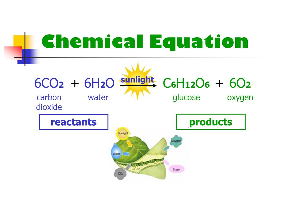 Chemical Equation 6CO2 + 6H2O C6H12O6 + 6O2 reactants products