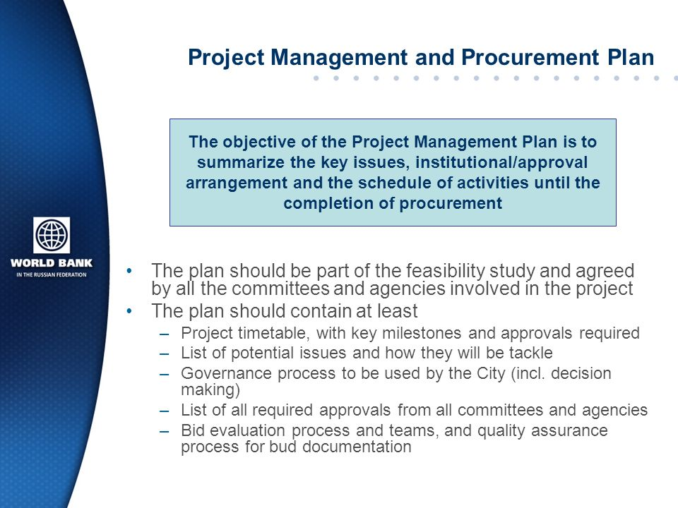 Project Management and Procurement Plan