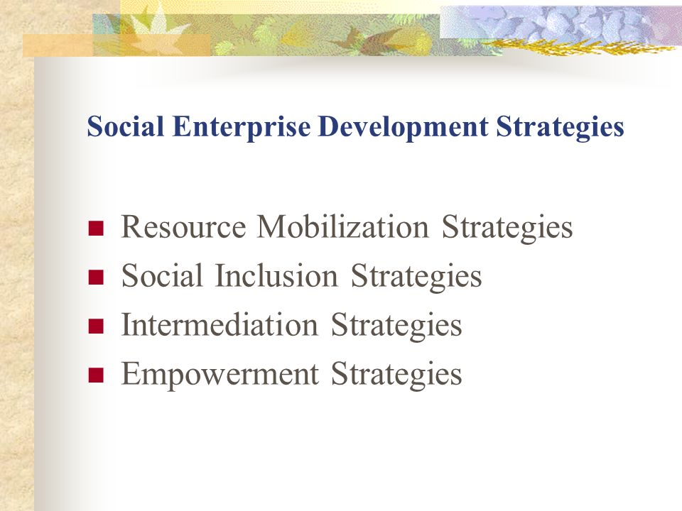 Social Enterprise Development Strategies