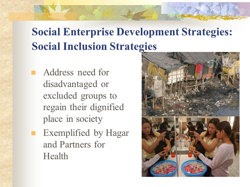 Social Enterprise Development Strategies: Social Inclusion Strategies
