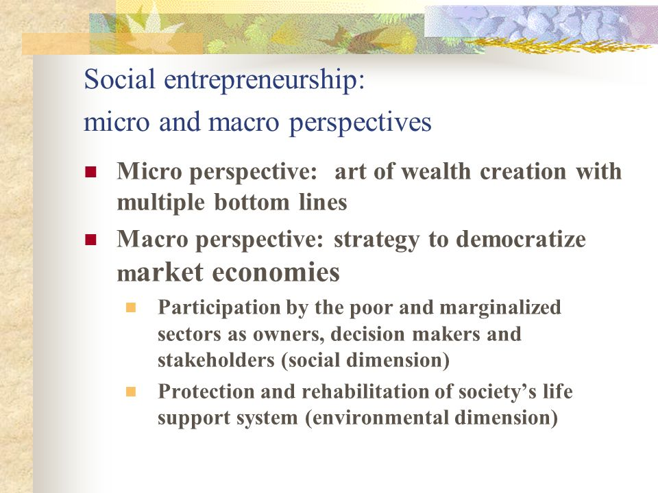 Social entrepreneurship: micro and macro perspectives