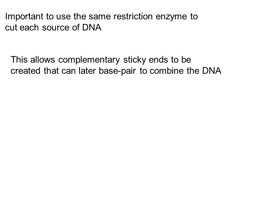 Important to use the same restriction enzyme to cut each source of DNA