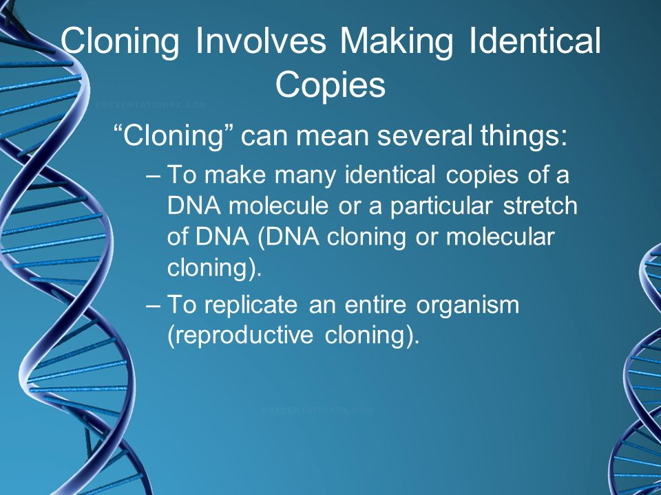 Cloning Involves Making Identical Copies