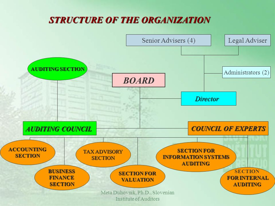 STRUCTURE OF THE ORGANIZATION