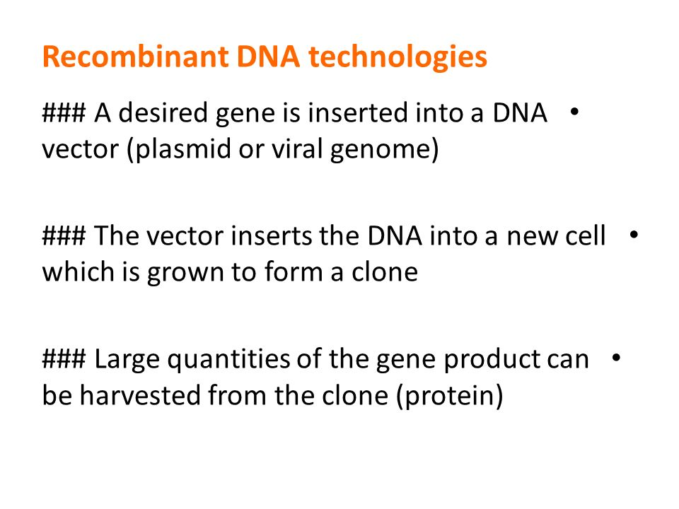 Recombinant DNA technology ppt download – Dna Technology Worksheet