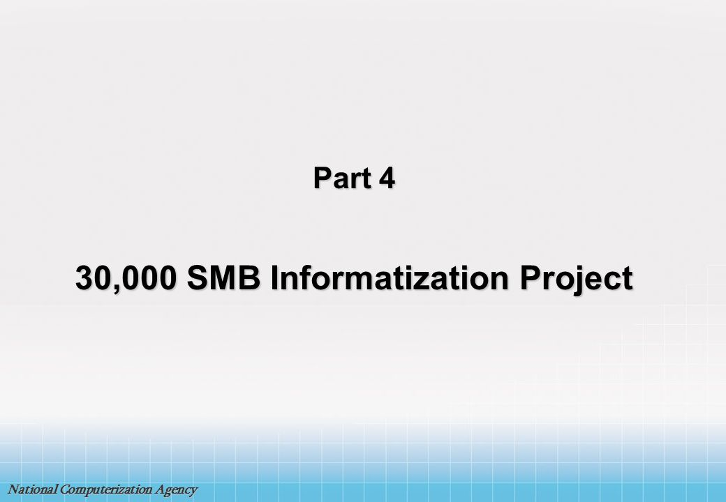 30,000 SMB Informatization Project