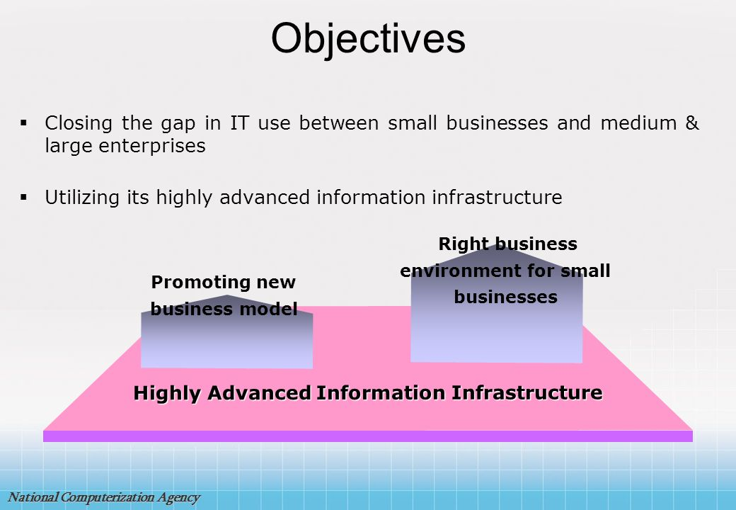 Objectives Closing the gap in IT use between small businesses and medium & large enterprises.