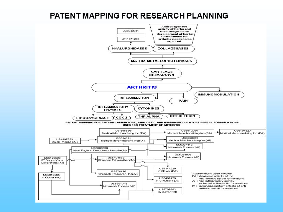 PATENT MAPPING FOR RESEARCH PLANNING