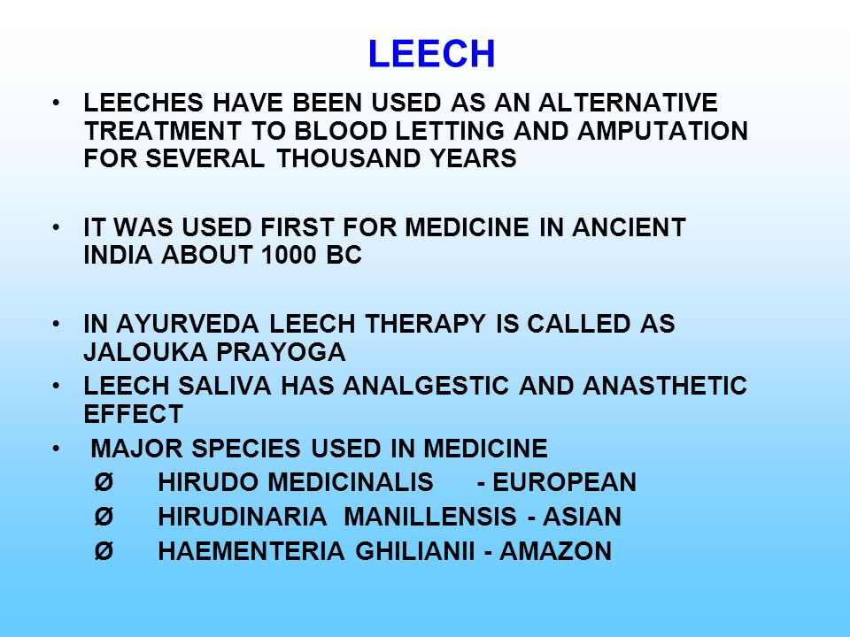 LEECH LEECHES HAVE BEEN USED AS AN ALTERNATIVE TREATMENT TO BLOOD LETTING AND AMPUTATION FOR SEVERAL THOUSAND YEARS.