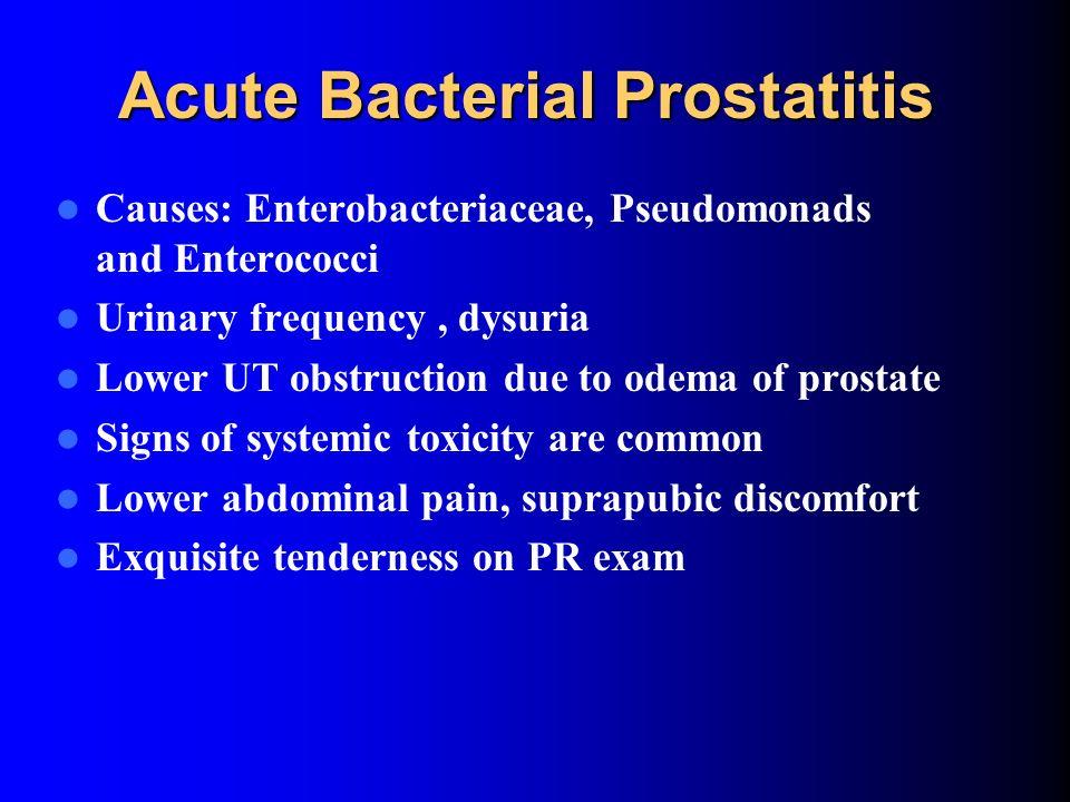 Cipro And Prostatitis