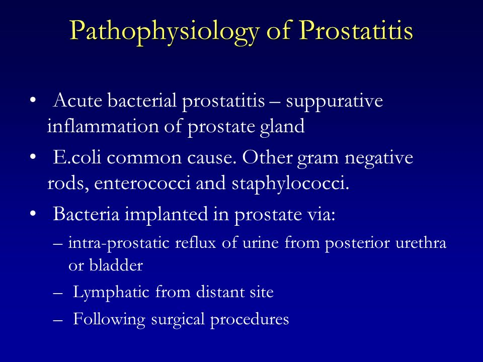 Pathophysiology of Prostatitis