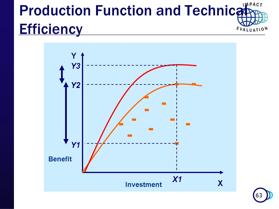 Production Function and Technical Efficiency