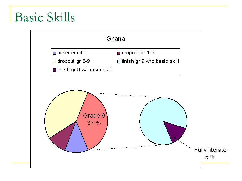 Basic Skills Grade 9 37 % Fully literate 5 %