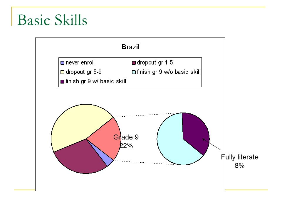 Basic Skills Grade 9 22% Fully literate 8%