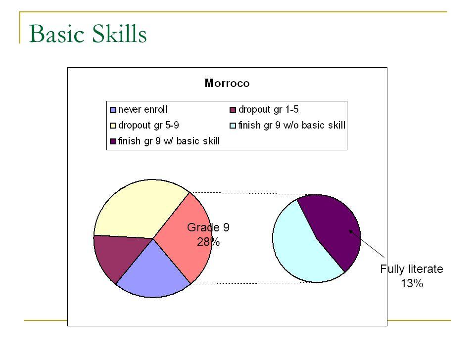 Basic Skills Grade 9 28% Fully literate 13%