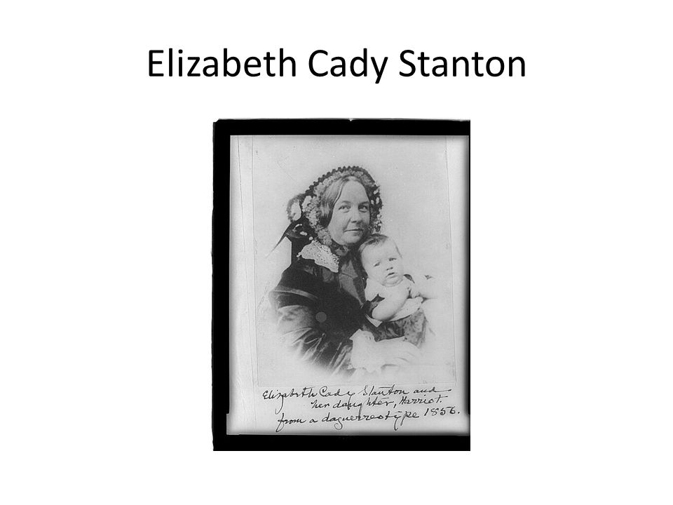 the contributions of elizabeth cady stanton to the early womens rights movement Born on november 12, 1815, in johnstown, new york, elizabeth cady stanton  was an abolitionist and leading figure of the early woman's movement.