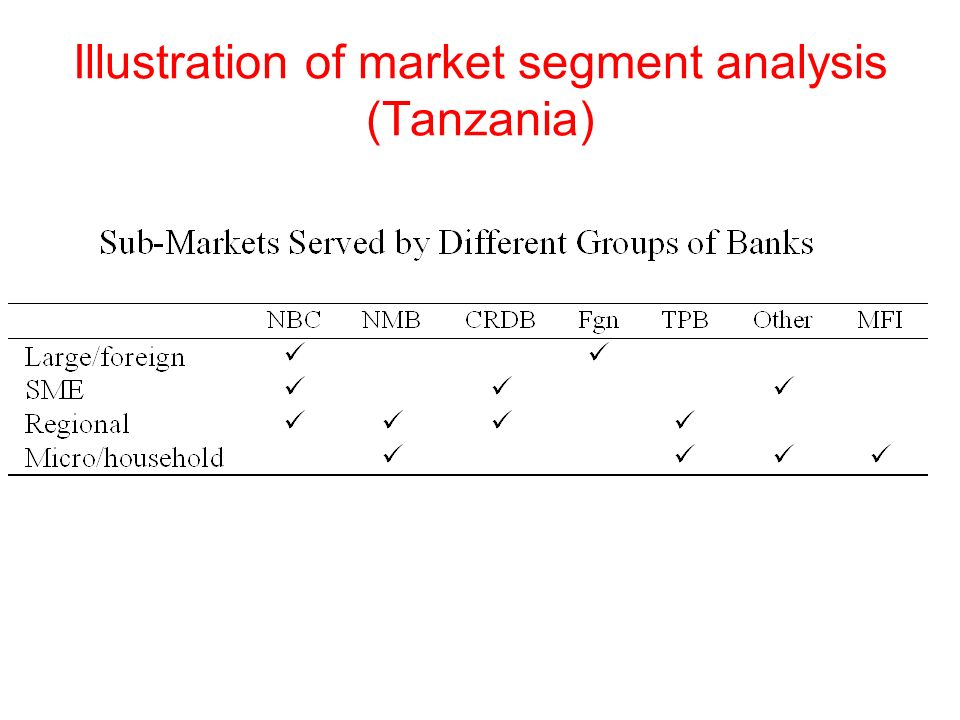 Illustration of market segment analysis (Tanzania)