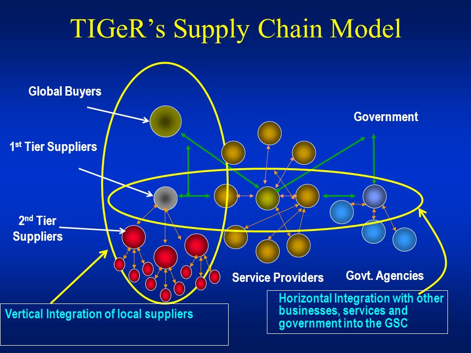 TIGeR's Supply Chain Model