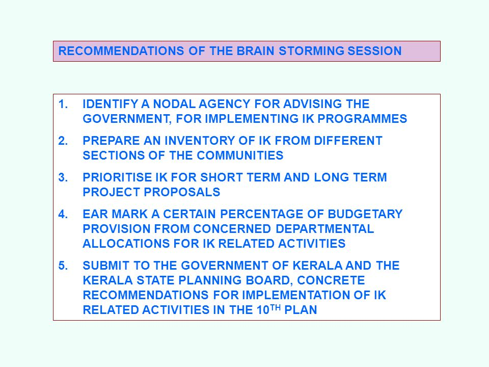 RECOMMENDATIONS OF THE BRAIN STORMING SESSION