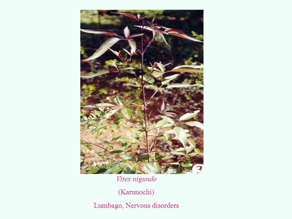 Lumbago, Nervous disorders