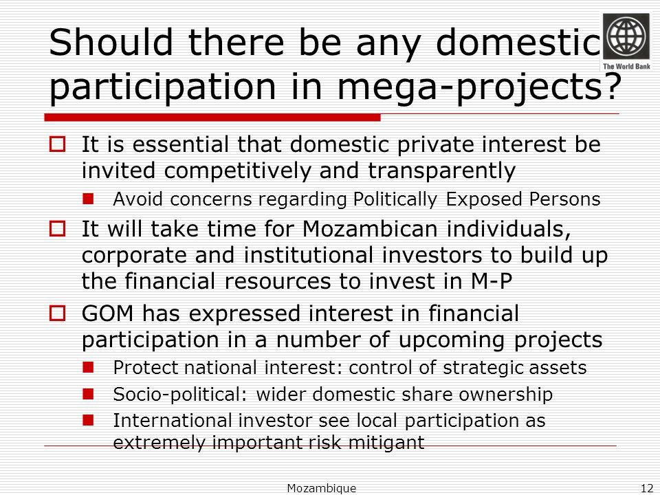 Should there be any domestic participation in mega-projects