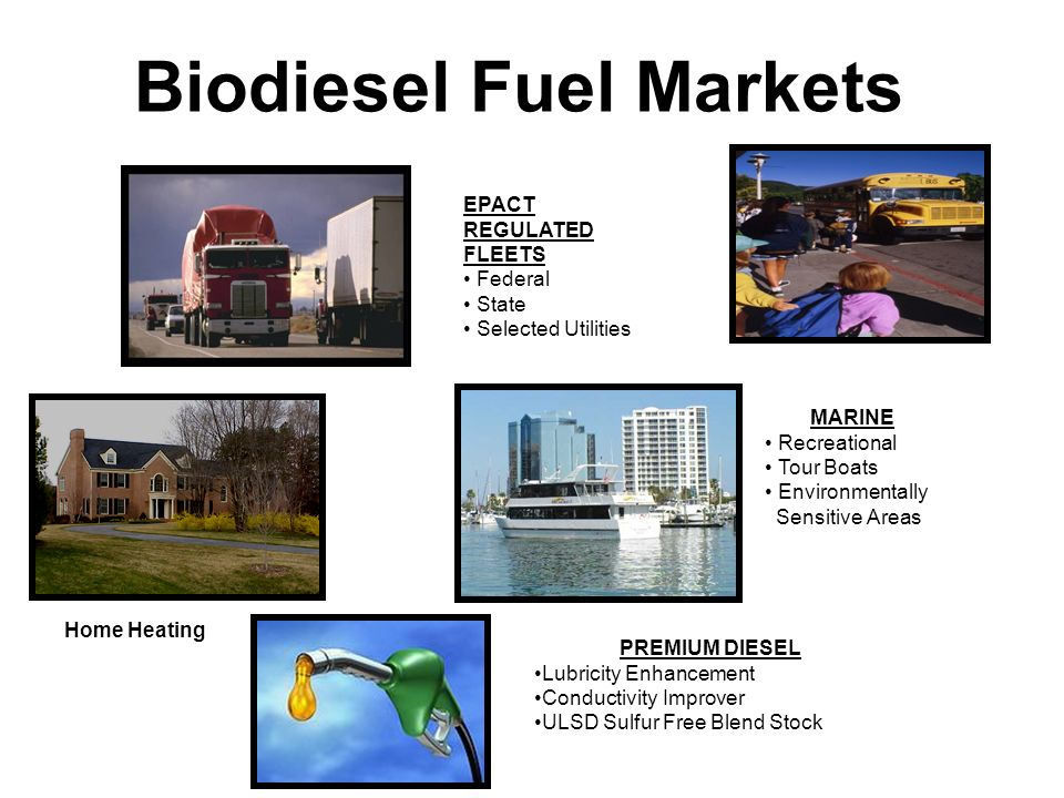 Biodiesel Fuel Markets