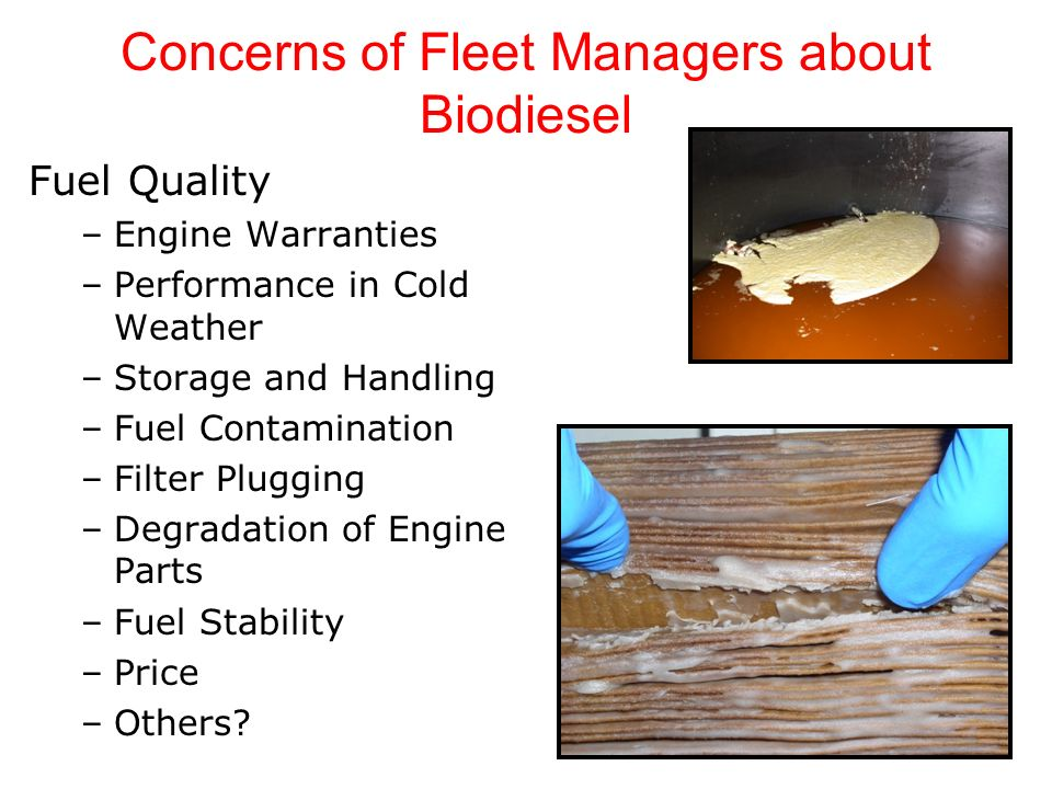 Concerns of Fleet Managers about Biodiesel