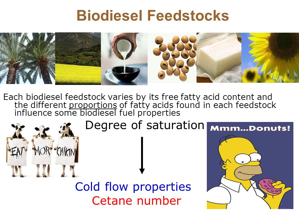 Biodiesel Feedstocks Degree of saturation Cold flow properties