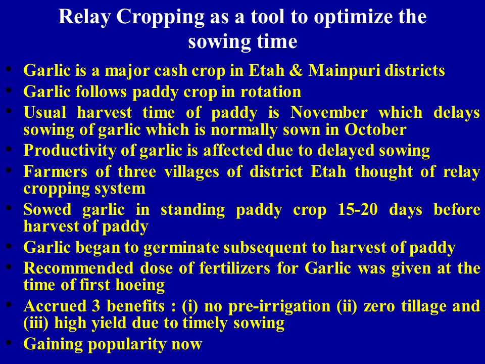 Relay Cropping as a tool to optimize the sowing time