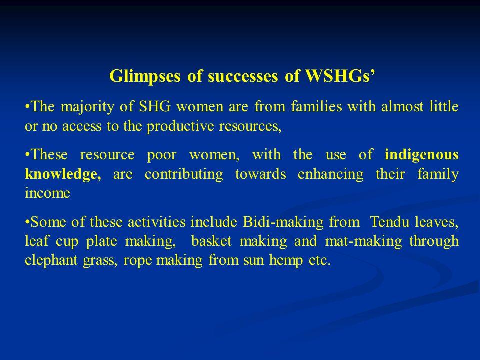 Glimpses of successes of WSHGs'