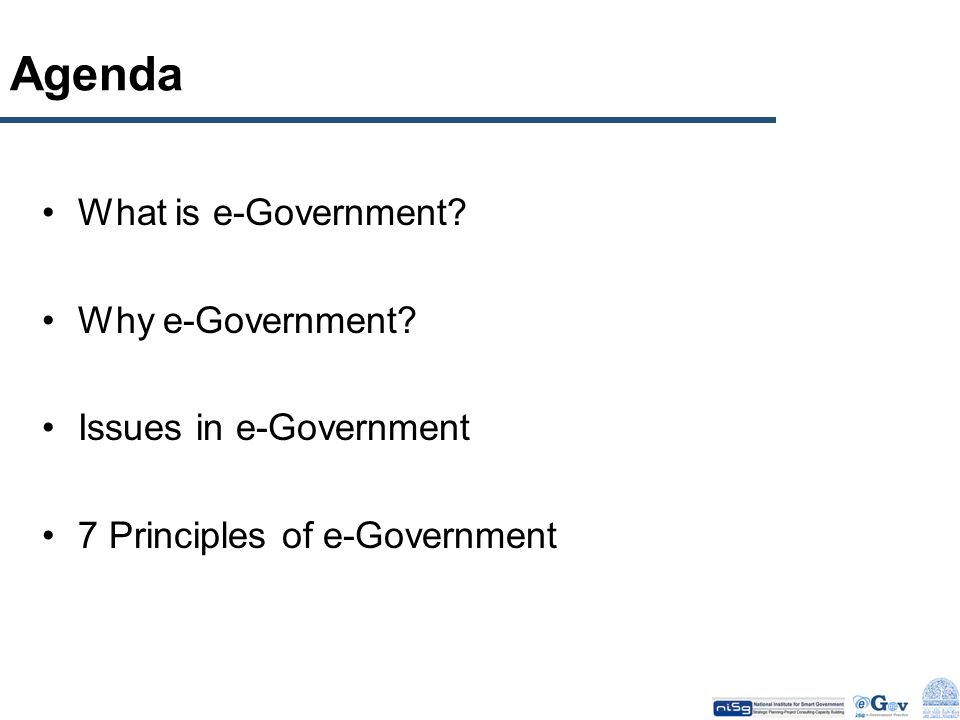 Agenda What is e-Government Why e-Government Issues in e-Government