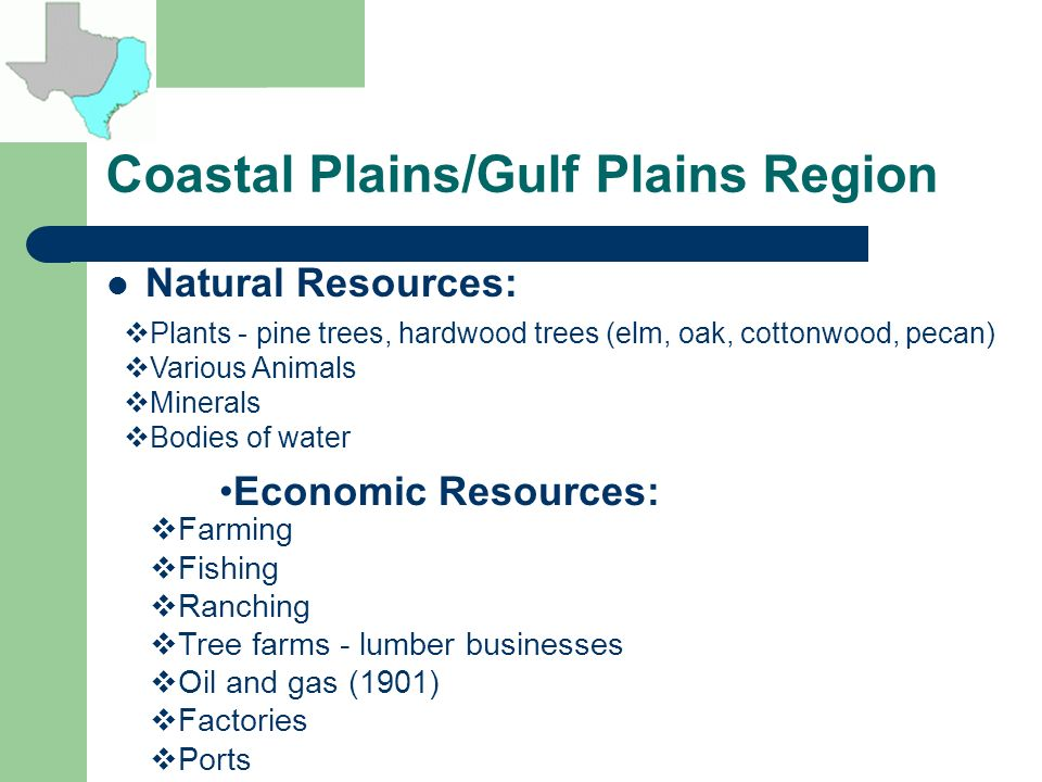 Coastal Plains Texas Natural Resources
