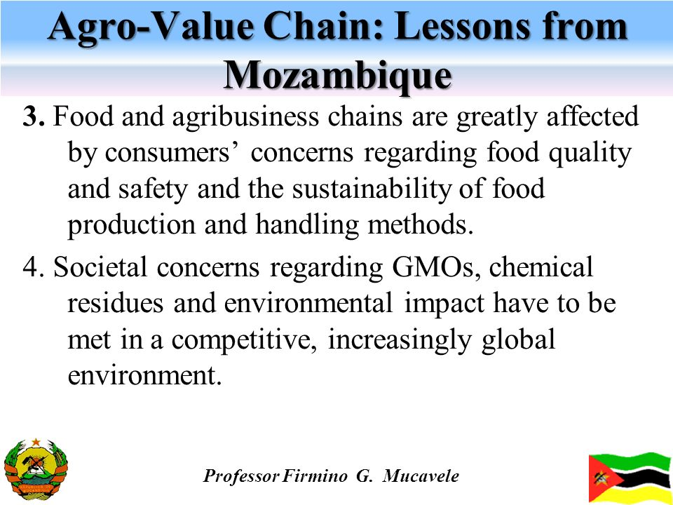 Agro-Value Chain: Lessons from Mozambique