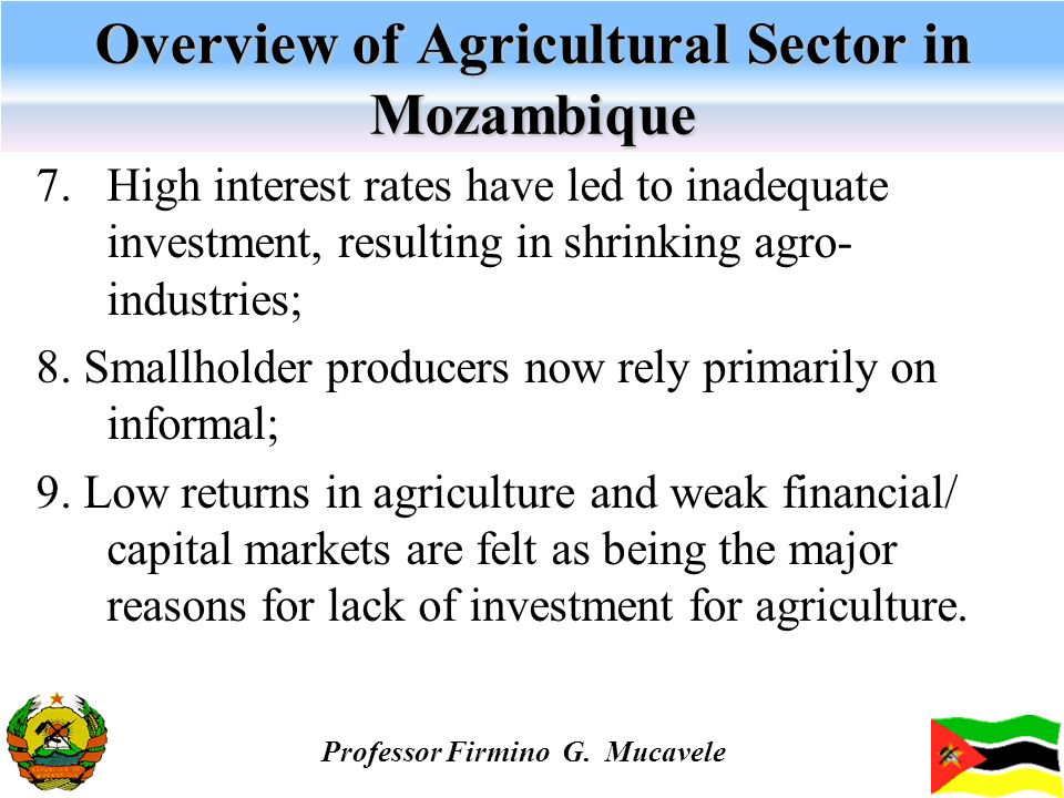 Overview of Agricultural Sector in Mozambique