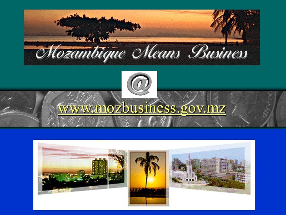 www.mozbusiness.gov.mz