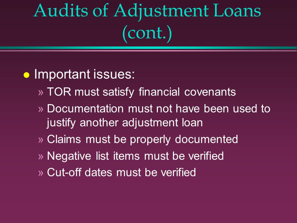 Audits of Adjustment Loans (cont.)