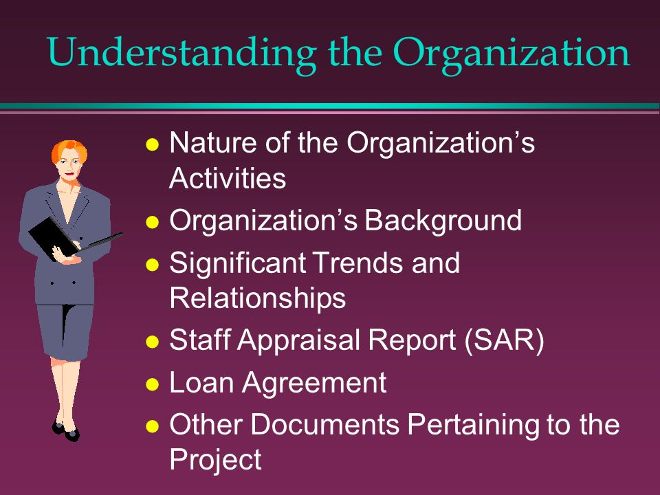 Understanding the Organization