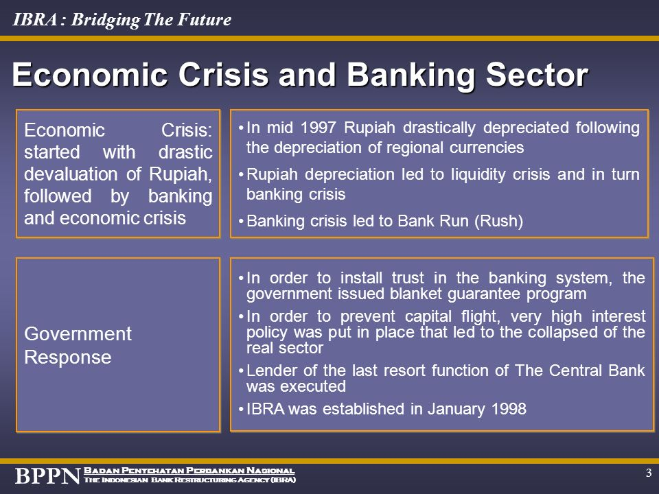 Economic Crisis and Banking Sector