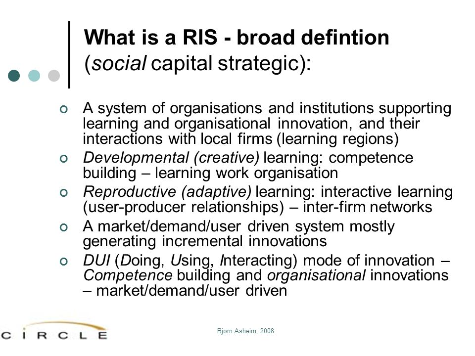 What is a RIS - broad defintion (social capital strategic):