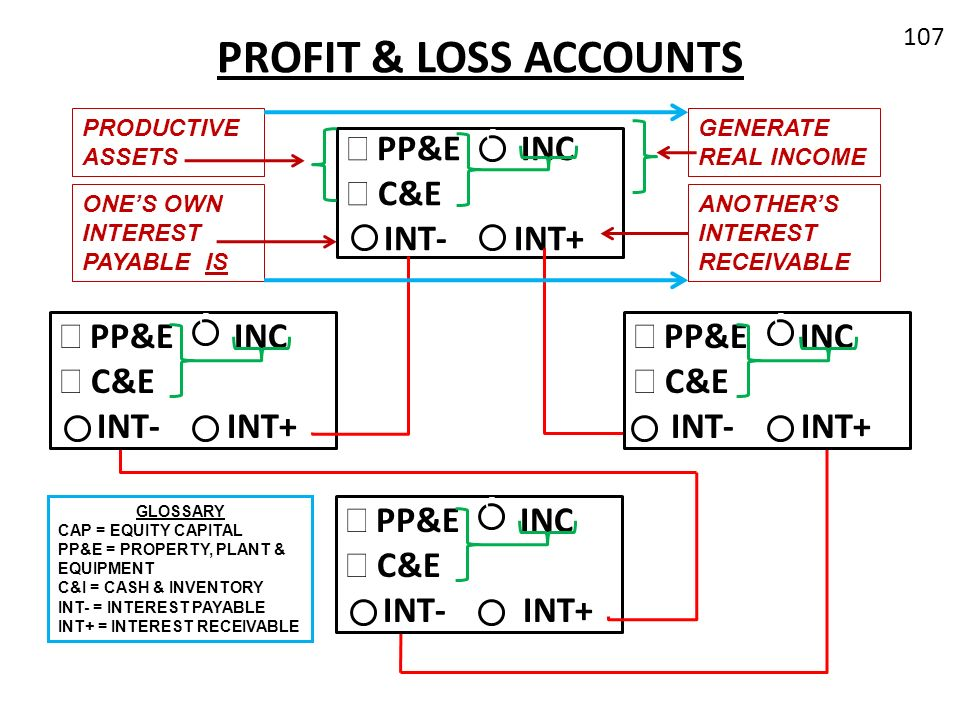 PROFIT & LOSS ACCOUNTS PP&E INC C&E INT- INT+ PP&E INC C&E INT- INT+
