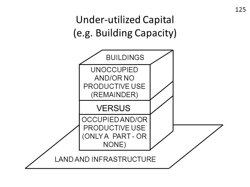 Under-utilized Capital (e.g. Building Capacity)