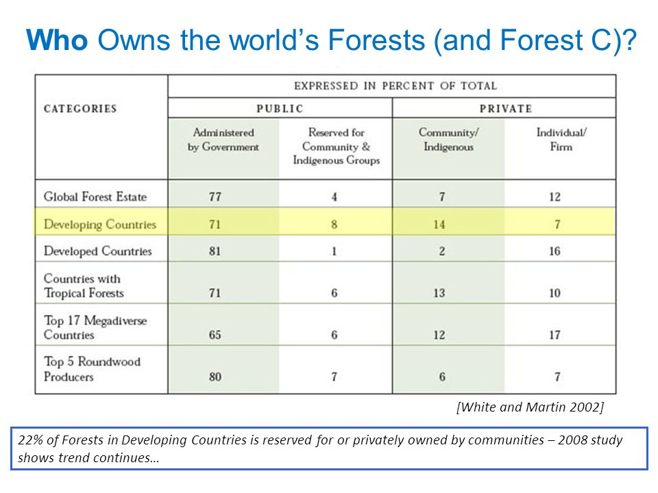 Who Owns the world's Forests (and Forest C)