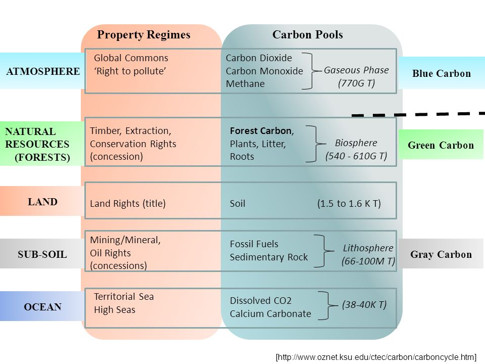 Property Regimes Carbon Pools
