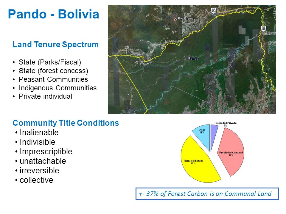 Pando - Bolivia Land Tenure Spectrum Community Title Conditions