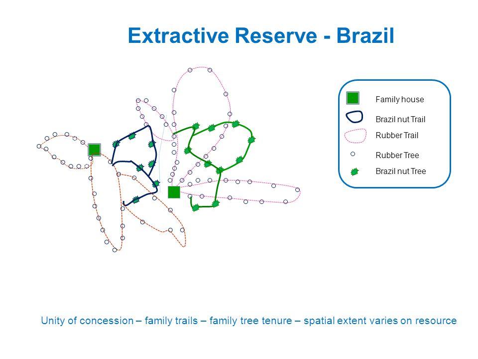 Extractive Reserve - Brazil